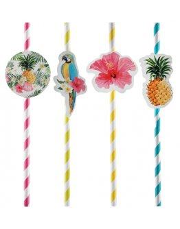Paille Tropical par 8